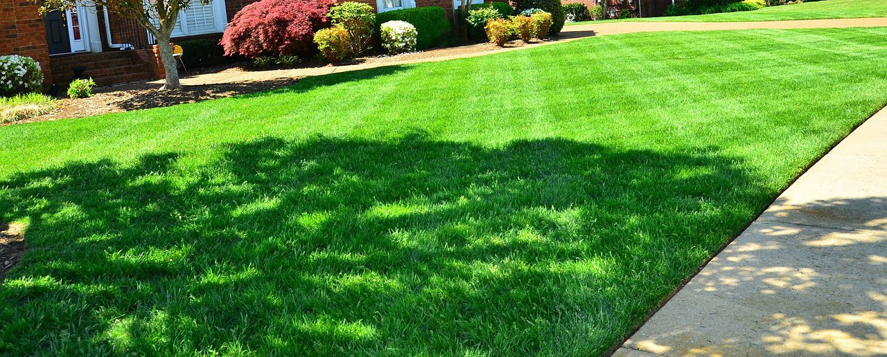 lawn-care-omaha2